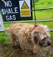 fracking/