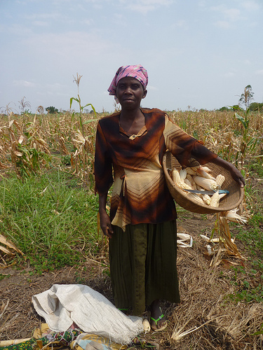 Farmer in Mozambique - photograph from War on Want